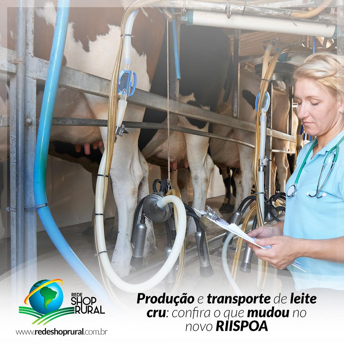 Produção e transporte de leite cru: confira o que mudou no novo RIISPOA