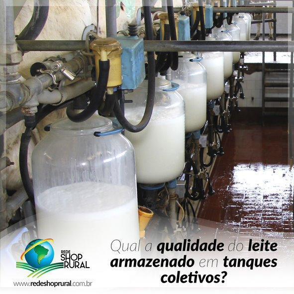 Qualidade do leite armazenado em tanques coletivos