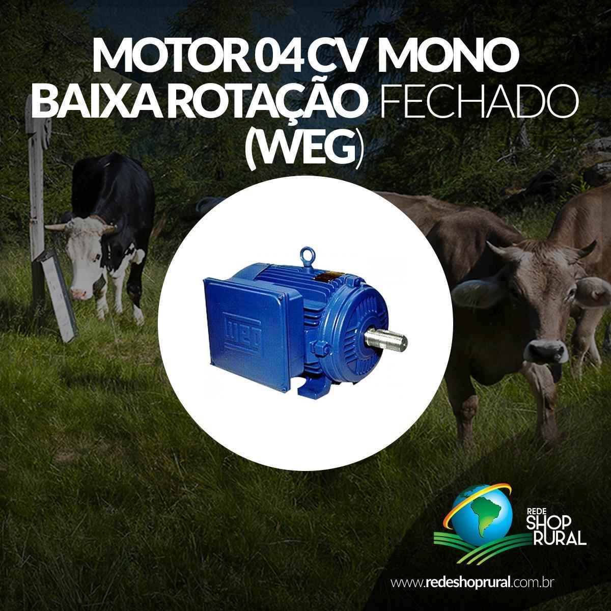 Motor 04 Cv Mono baixa Rotação Fechado (Weg)
