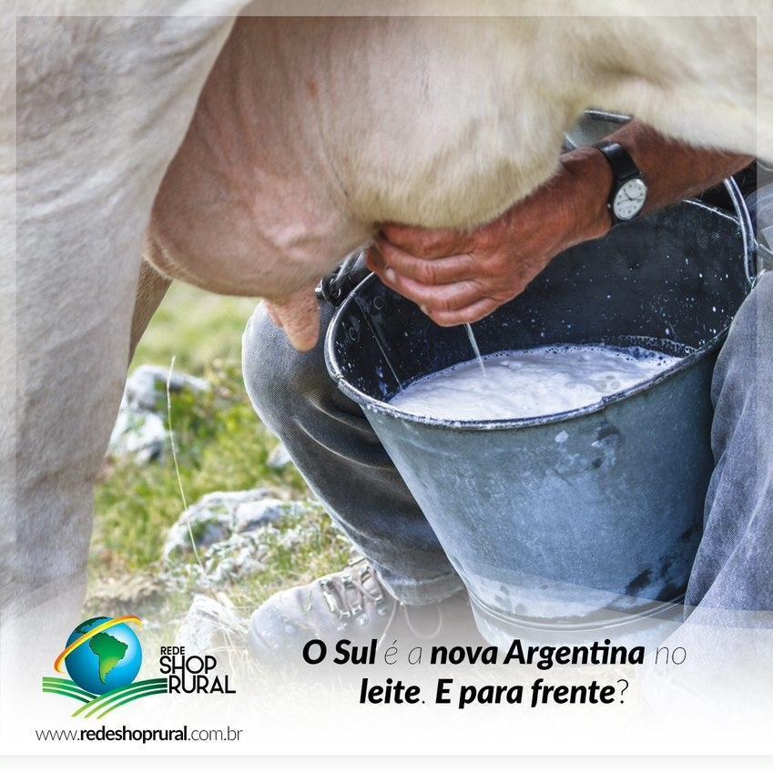O Sul é a nova Argentina no leite. E para frente?