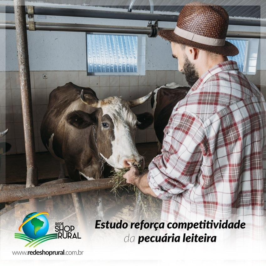 Estudo reforça competitividade da pecuária leiteira