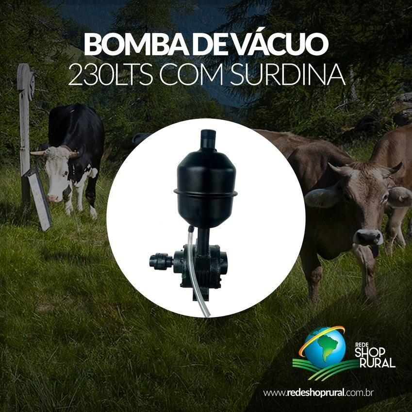 Bomba De Vácuo 230lts Com Surdina