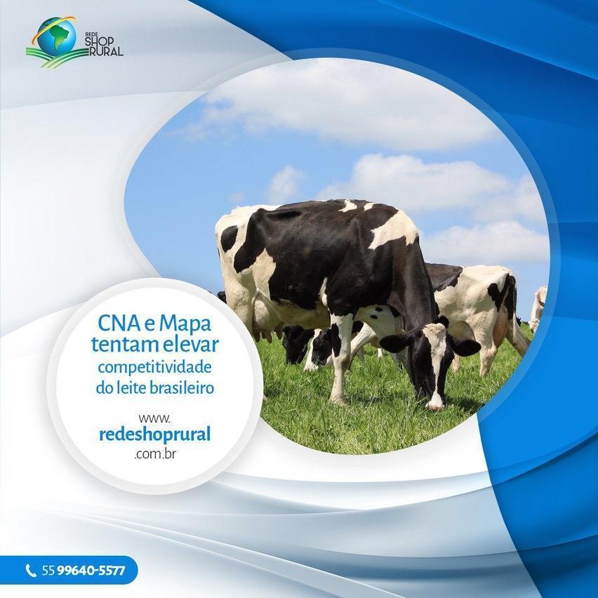CNA e Mapa tentam elevar competitividade do leite brasileiro