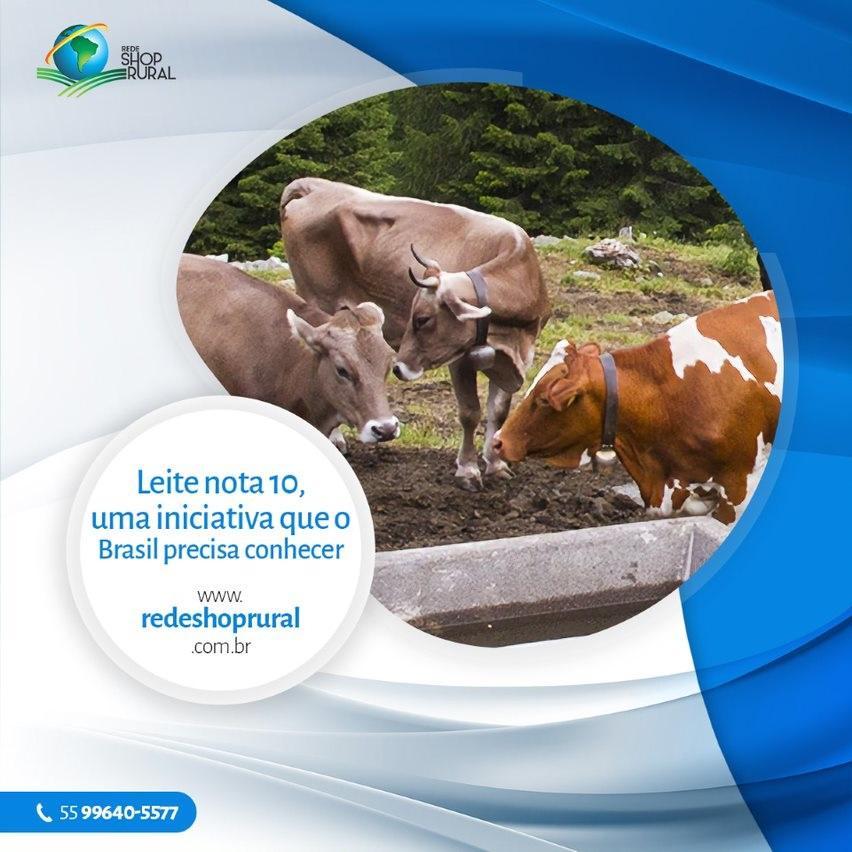 LEITE NOTA 10, UMA INICIATIVA QUE O BRASIL PRECISA CONHECER
