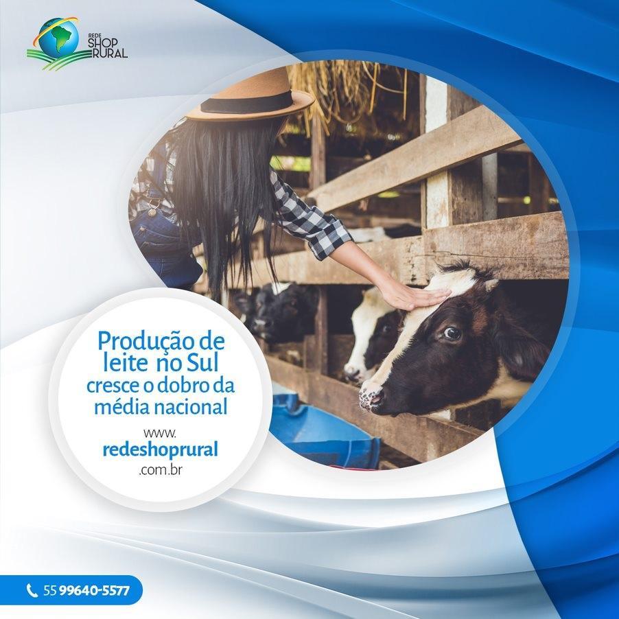 Produção de leite no Sul cresce o dobro da média nacional