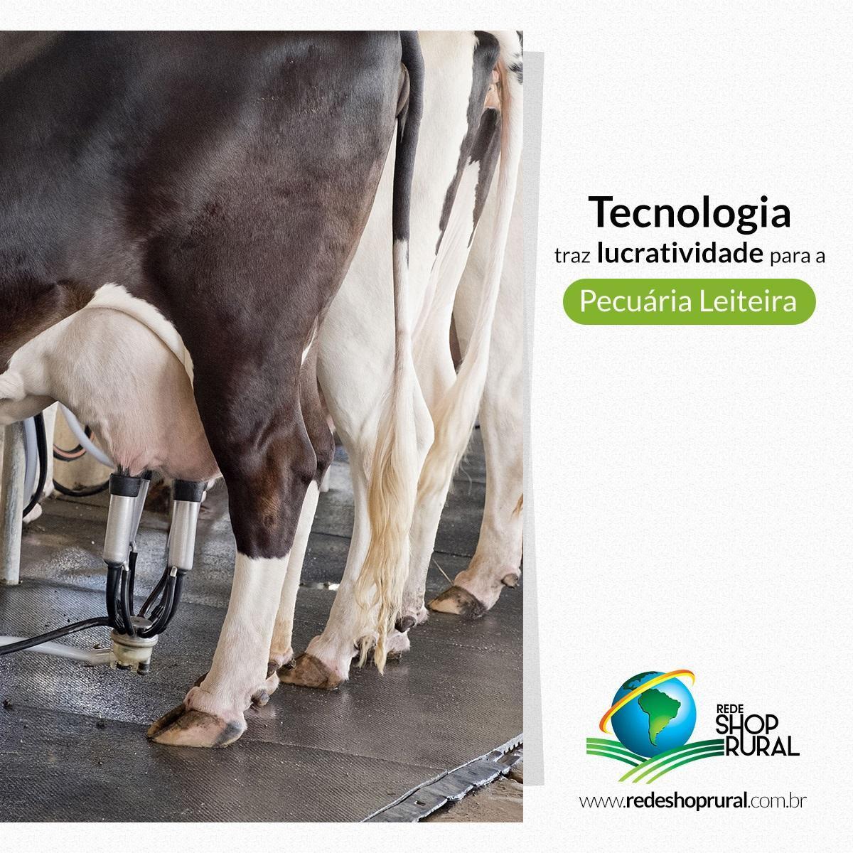 Tecnologia traz lucratividade para a pecuária leiteira