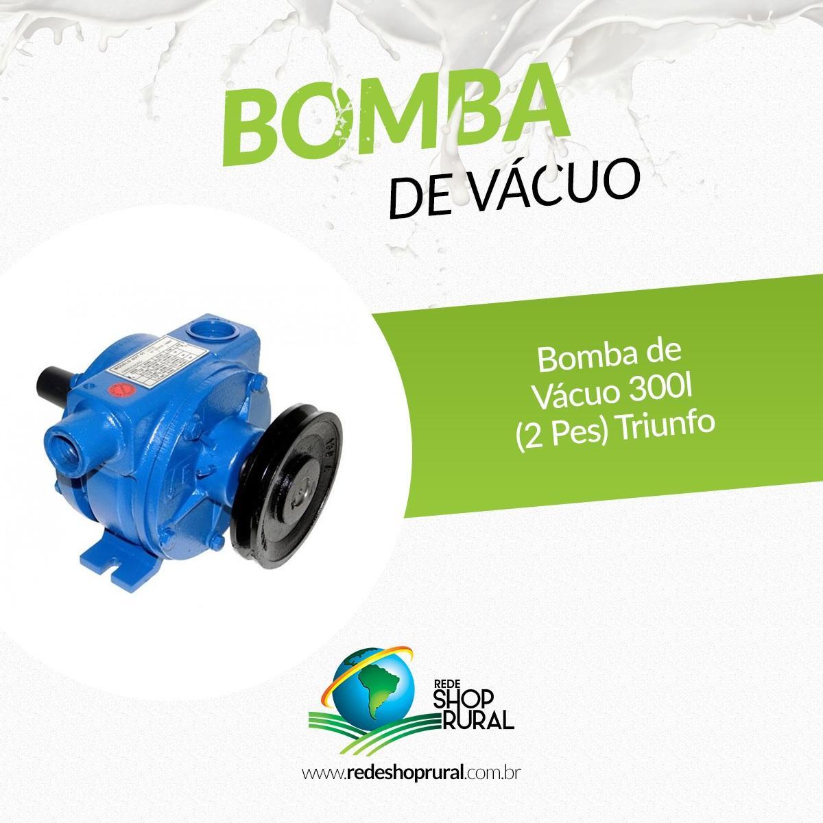 Bomba de Vácuo 300L (2 Pés) Triunfo