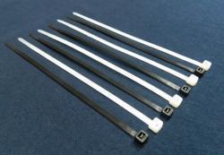 ABRACADEIRA NYLON 200 X 2,5MM (EMB C/100UN)